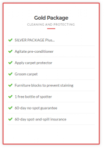 Taylor steamer carpet cleaning package 2