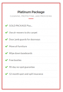 Taylor steamer carpet cleaning package 3